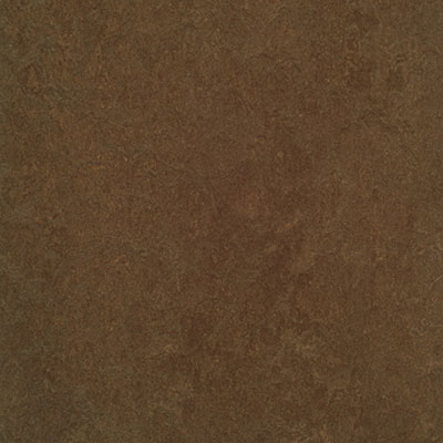 Forbo G3 Marmoleum Fresco Walnut 3874