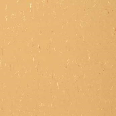 Forbo G3 Marmoleum Piano Bleached Caramel 3608