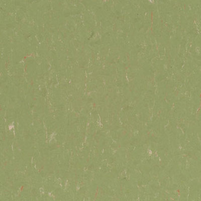 Forbo G3 Marmoleum Prisma (Phased Out) Cricket Field 3626
