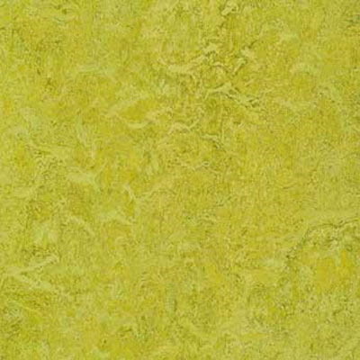 Forbo G3 Marmoleum Real 1/10 Charteuse 3224