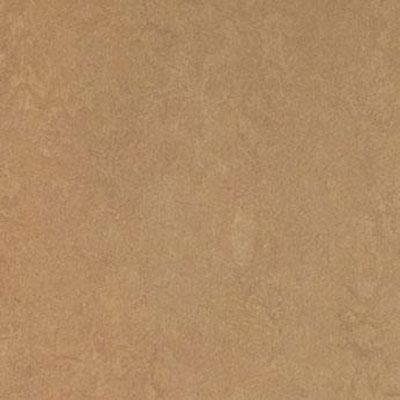 Forbo marmoleum click square camel for Marmoleum flooring
