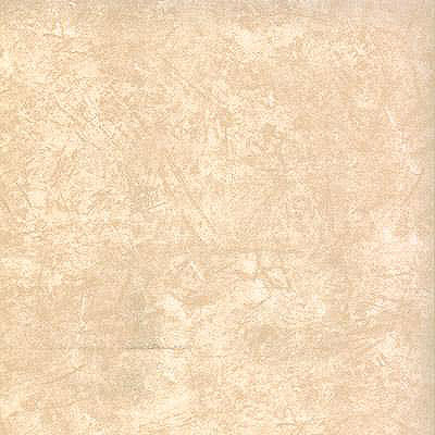 Tarkett Fiber Floors Personal Expressions - High Plains Designer White 23081