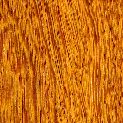 Cikel Brasilia Solid 3 1/4 Ironwood Natural