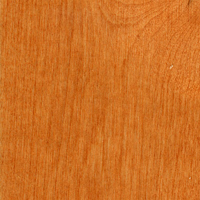 Hawa Solid Birch Bronze HBF-BIRCH15