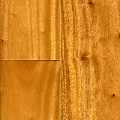 Johnson Carnaval 4 3/4 Solid Brazilian Oak AMZs12205