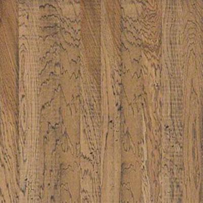Shaw floors belle grove fireside for Belle flooring
