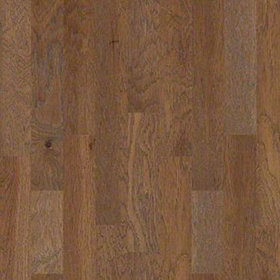 Shaw Floors Mineral King 6 Pacific Crest