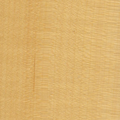 Wood Flooring International American Wood 3 American Maple AMWMUS3