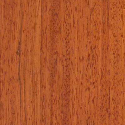 Wood Flooring International Exotics Singlestrip 5 Brazilian Cherry WFIPEBCH5