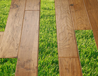 Choosing eco-friendly hardwood