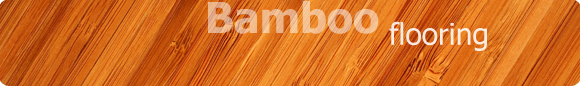 Nothing beats a bamboo floor from FastFloors.com. We offer a wide selection of solid bamboo, no-glue bamboo floors as well as the new strand woven bamboo flooring.