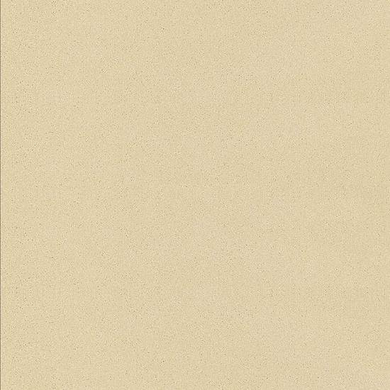 Etiquette 24 x 24 Polished Beige