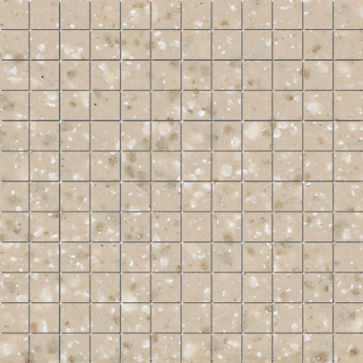 American Olean Unglazed Porcelain Mosaics Clearface 1 x 1 Willow Speckle