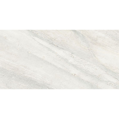 Anatolia Tile & Stone Evolution HD 12 x 24 Ice