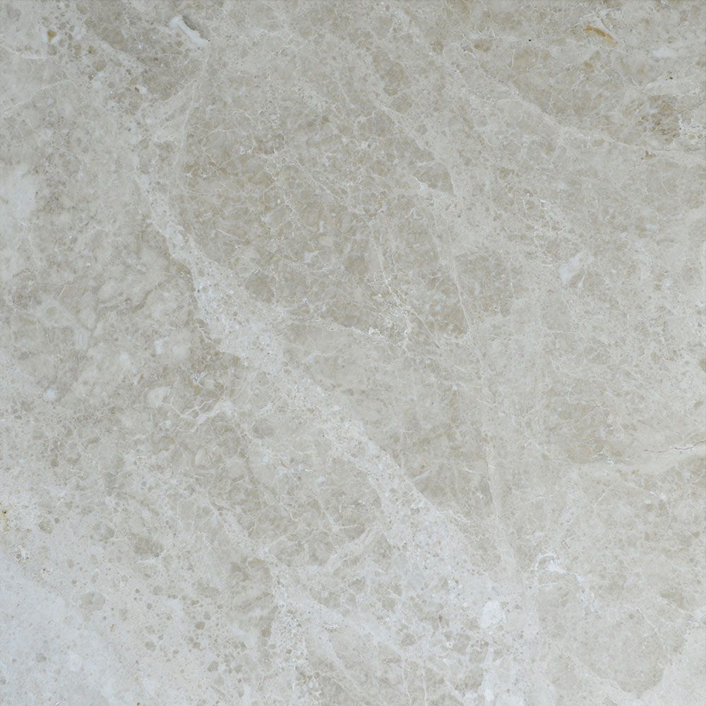 Atlantic Stone Source Marble 24 x 24 Polished Cappucino