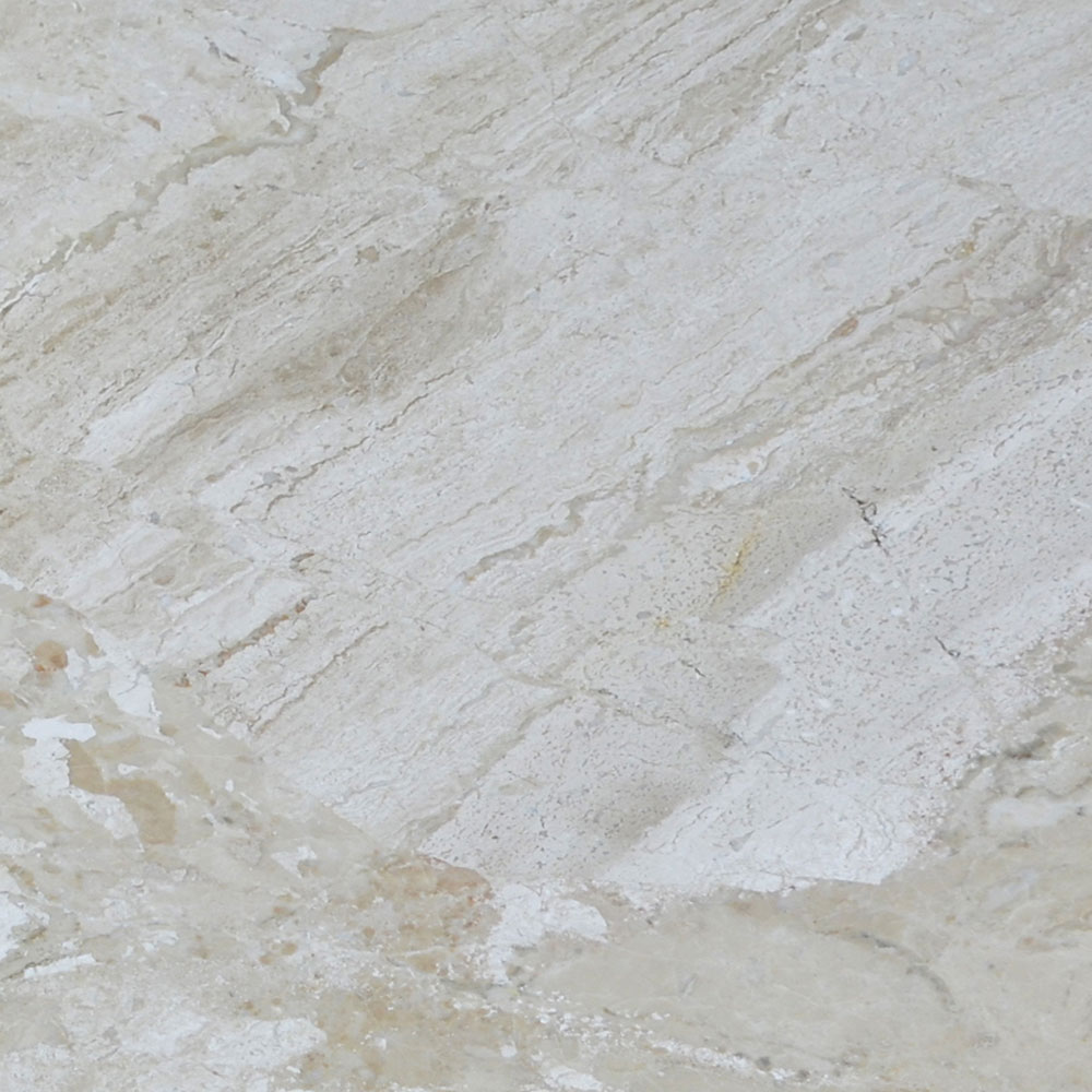 Atlantic Stone Source Marble 24 x 24 Polished Venice