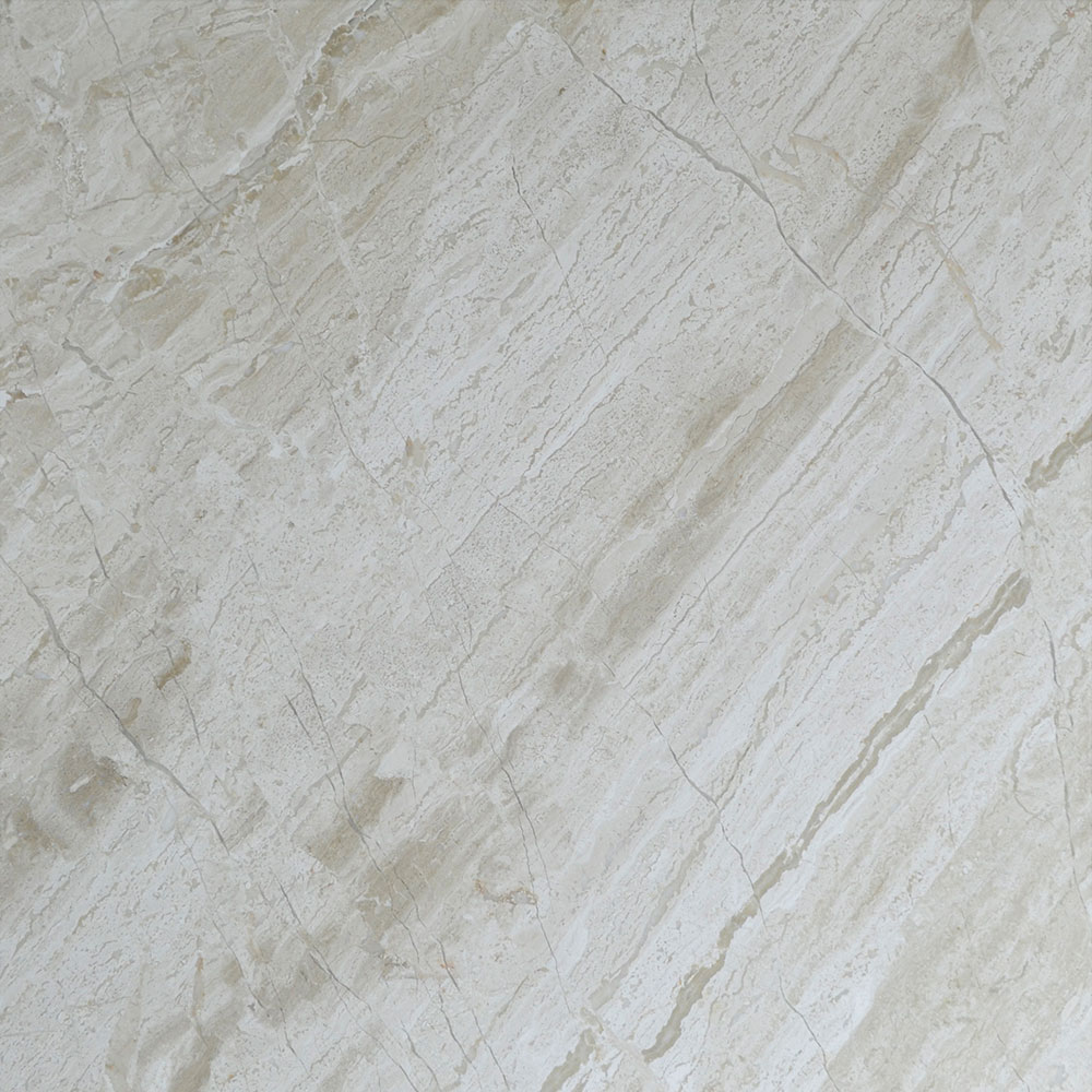 Atlantic Stone Source Marble 24 x 24 Polished Venice Antique