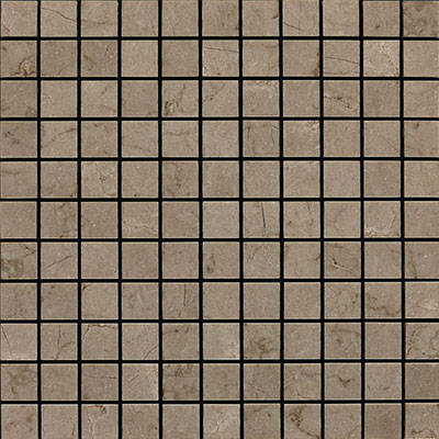 Daltile Marble 1 x 1 Mosaic Honed Silver Screen Honed