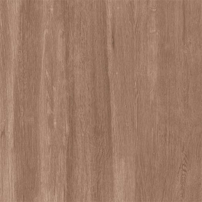 Eleganza Tiles Emotion Wood 8 x 48 Rovere