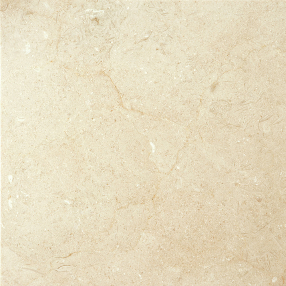 Emser Tile Marble 24 x 24 Polished Crema Marfil Plus