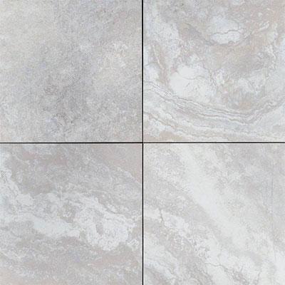 Ms International Arterra Porcelain Pavers 24 X 24 Argento