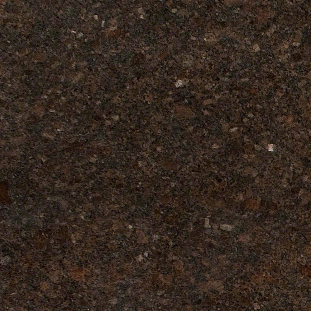 Ms International Cappuccino 12 In X 12 In Polished: MS International Granite 12 X 12 Coffee Brown