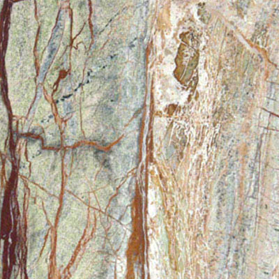 MS International Marble 12 x 12 Polished Rain Forest