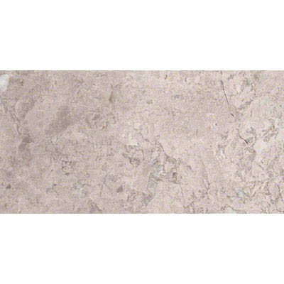 MS International Marble 12 x 24 Polished Tundra Gray