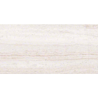 MS International Marble 12 x 24 Polished White Oak