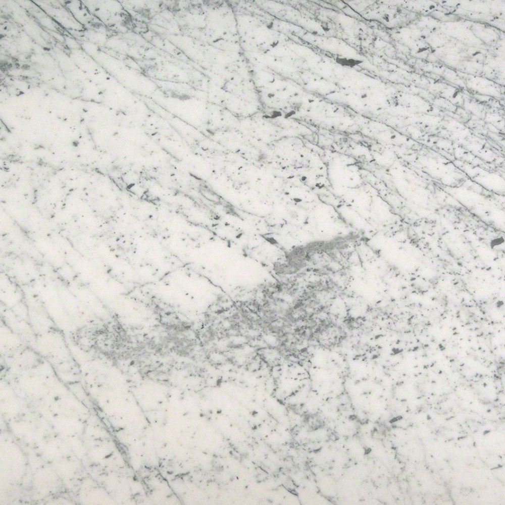 MS International Marble 18 x 18 Polished Carrara White Polished