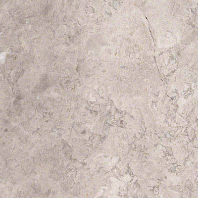 MS International Marble 18 x 18 Polished Tundra Gray Polished