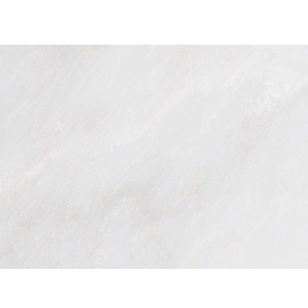 MS International Marble 8 x 12 Arabescato Carrara