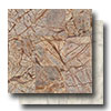 Marble Stone 12 x 12 Honed