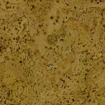 Duro Design Barriga Cork Tiles 12 x 12 Panasia Green