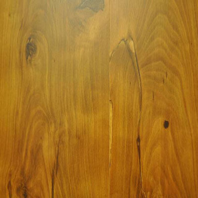 Stepco Grand Choice Collection Pompas Pine