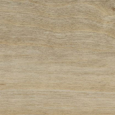 Spacia Wood 4 x 36 Bleached Elm