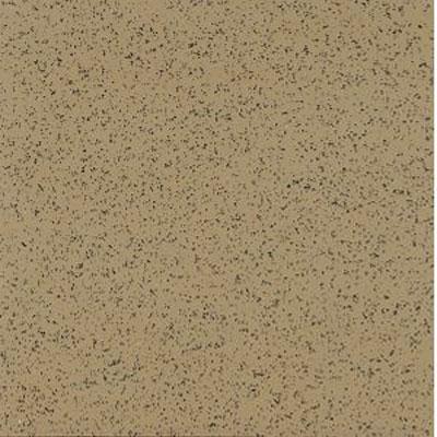 Armstrong Excelon Stonetex 12 X 12 Golden Fossil
