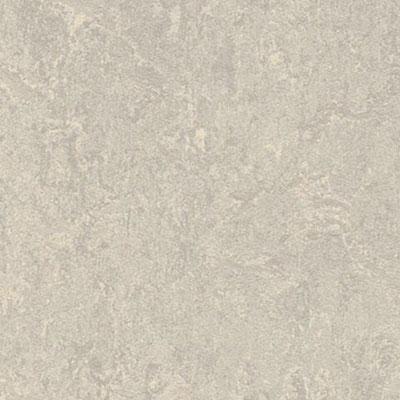 Forbo Marmoleum Click Cinch Loc 12 X 36 Vinyl Flooring Colors