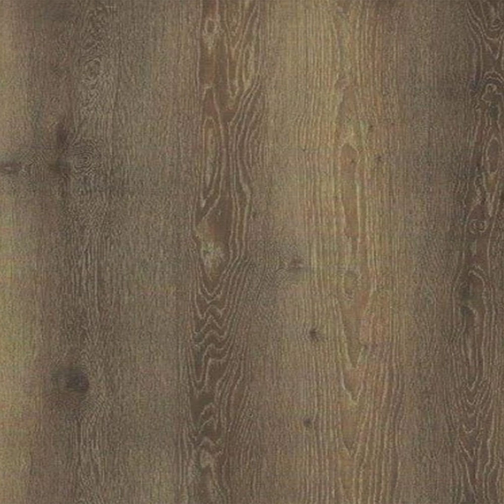 Forest Accents Eloquence Plank Canyon Oak