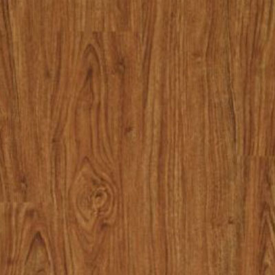 Tarkett Access Plank 6 X 48 Amber