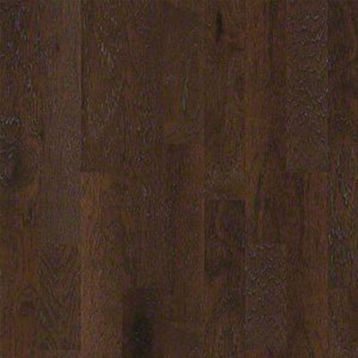 Shaw Floors Mineral King 6 Bearpaw